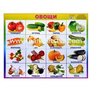Плакат карт Овощи Алфея Леда
