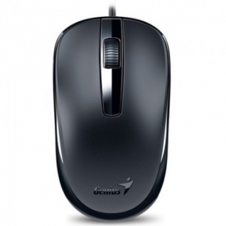 Мышь компьютерная Genius DX-120, USB, G5, чёрная