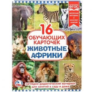 """Карточки В Папке. """"Умка"""" Животные Африки.Объем: 16 Карточек. Формат: 167х218мм"""
