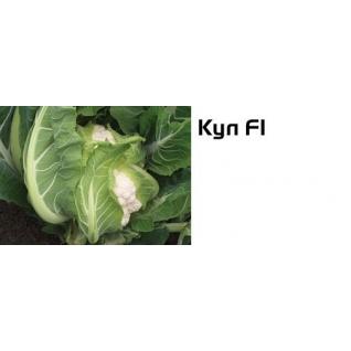Семена цветной капусты Кул F1 - 2500шт