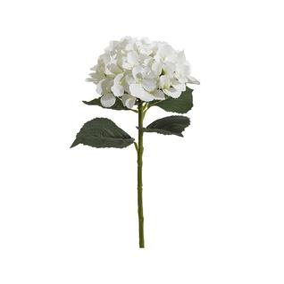 Гортензия FIEBIGER FLORISTIK 56см белый