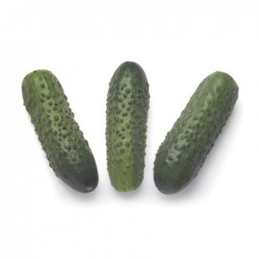 Семена огурца корнишона Соната F1 - 1000шт 36986046