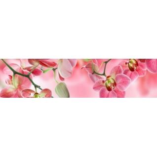 Фартук для кухни Орхидея №3 розовая 610х2440мм