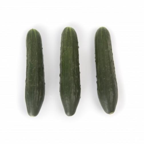 Семена огурца Святогор F1 - 1000шт 36986138